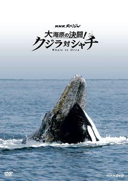 NHKスペシャル 鯨とシャチ