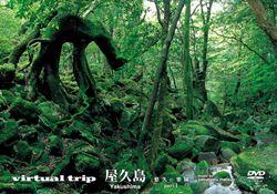virtual trip 屋久島 悠久の楽園1
