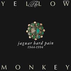 JaguarHardPain