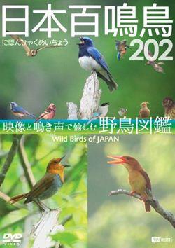 日本百鳴鳥 202 にほんひゃくめいちょう/映像と鳴き声で愉しむ野鳥図鑑