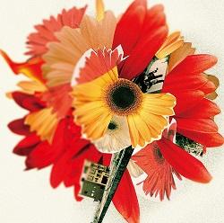 ハナハサク 花は咲くプロジェクト arrangement by 菅野よう子