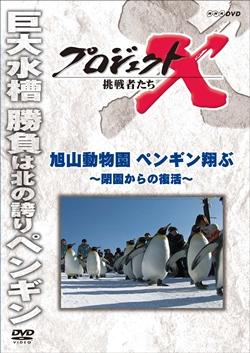 旭山動物園ペンギン翔ぶ 閉園からの復活