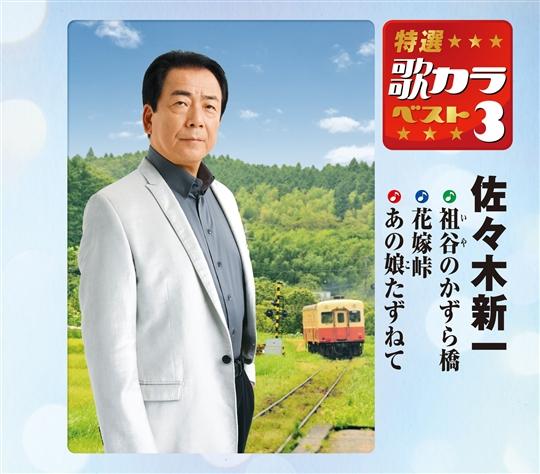 特選・歌カラベスト3 佐々木 新一