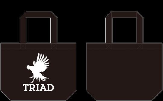 TRIADオリジナル・レコードバッグ(B)